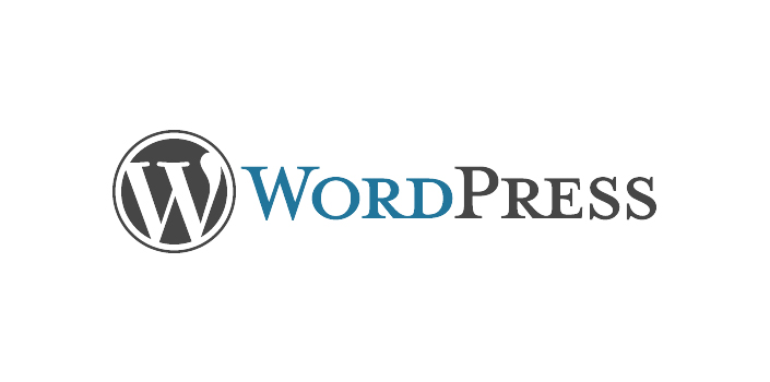 Wordpress CMS utilizzato da New IT siti web responsive Roma